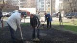 В мікрорайоні Стара Дарниця посадили 250 дерев