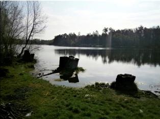 Озеро на ДВРЗ