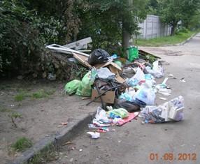 ДВРЗ, сміття біля приватних будинків на вулиці Макаренка