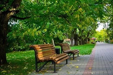 ДВРЗ, парк біля клубу