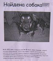 Двір будинку №39Д по вул.Алма-Атинській, ДВРЗ