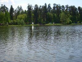 Місцевість ДВРЗ, озеро Берізка (Лісове)