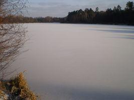 ДВРЗ, озеро Лісове взимку, фото Ірини Шевченко