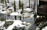 Ревіталізація річки Дарниця