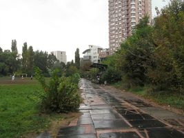 Руины стадиона Арсенал. На этой дорожке мы сдавали стометровку. Бывшие трибуны заросли деревьями и их совсем не видно.