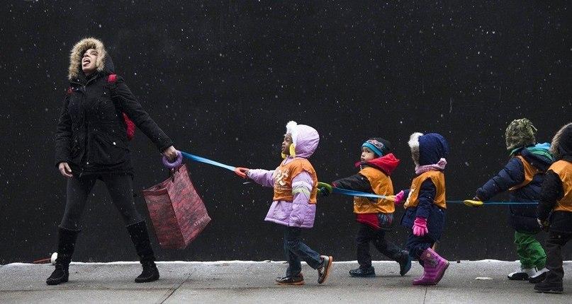 Дети идут в библиотеку