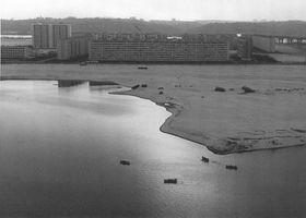 Озеро Тельбин, Березняки (Травень 1974). Фото Володимира Фаліна