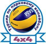 Волейбольний турнір біля озера Тельбин