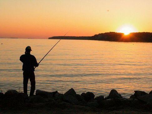 Осенний Кубок по рыбной ловле