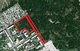 В лісі ДВРЗ продаються земельні ділянки