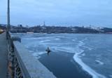 Завтра на мосту Патона выстроится живая цепь