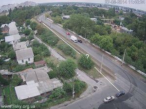 Автомобілісти просять спиляти дерево, через яке не видно дороги