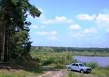 Околиці лісового селища пропонують забудувати