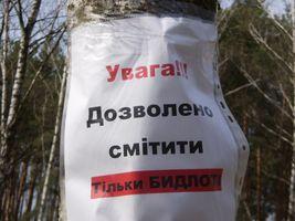 Агітація за чистий ліс