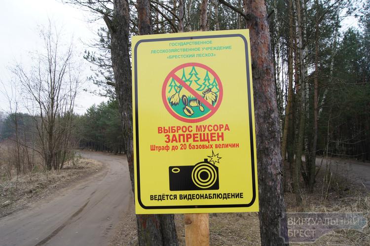 Фотоловушки в Беларуси