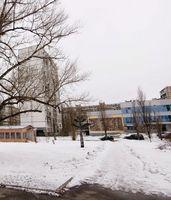 У Києві на Березняках вкрали скульптуру