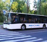 Автобус №49 (Березняки - метро Лівобережна) став ходити частіше