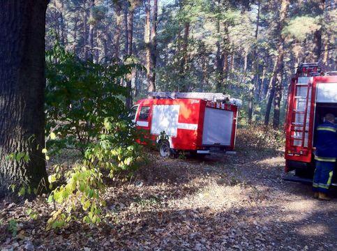 Пожежа в лісі ДВРЗ