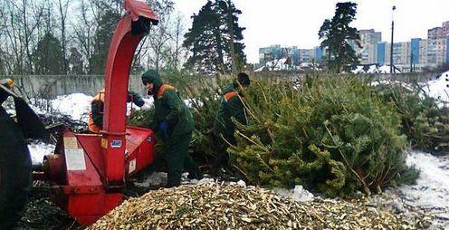У Дніпровському районі Києва приймають ялинки