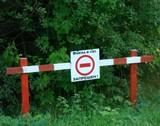 Жители ДВРЗ просят ограничить въезд в лес