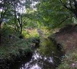 КП `Плесо` не розчищатиме київську річку Дарниця