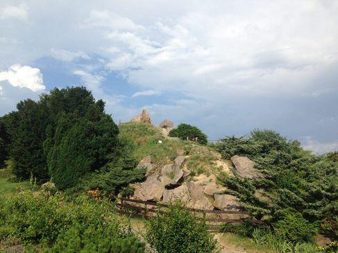 Київські ботанічні сади