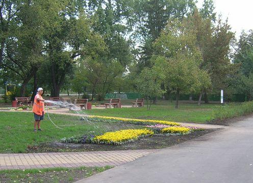 Сквер Івана Миколайчука