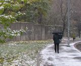 Рання зима в Києві