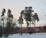 У Києві знову сніжно