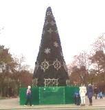 Головна ялинка Дніпровського району засвітиться в понеділок