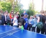 Настільний теніс у парку Сосновому