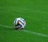 На полі стадіону ДВРЗ зійшла трава