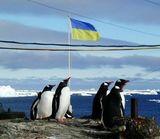 Как живут украинцы на станции Вернадского в Антарктиде
