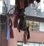 В Киеве массово развесили мужские галстуки