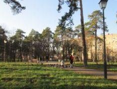 Парк Сосновий на ДВРЗ