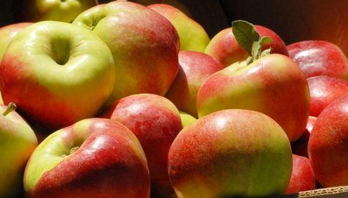 Шведи за новорічним столом смакували яблуками з України