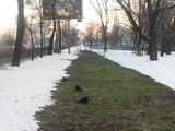 Над новою теплотрасою сніг уже не тане