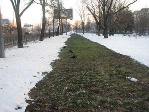 Над новою теплотрасою (починається від зеленого будівельного паркану) сніг уже не тане