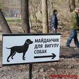 Список майданчиків для вигулу собак у Дніпровському районі