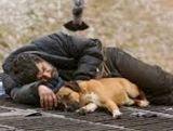 Бездомні гріються, де можуть