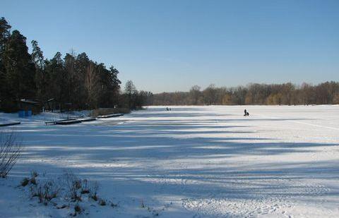Лісове озеро поблизу ДВРЗ