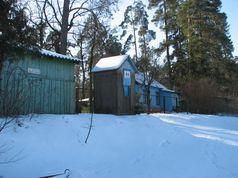 Озеро Лісове взимку 2014 року