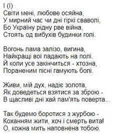Ярослав Чорногуз. Світло кохання