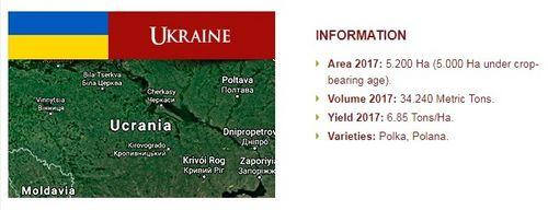 Україну прийнято до складу Міжнародної малинової організації (IRO)
