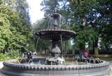 Водограї та квітники деяких парків Києва