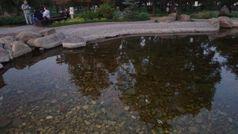 Парк Кіото