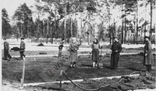 Післявоєнний суботник на горі Базарка в місцевості ДВРЗ