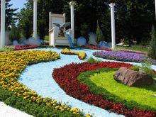 На Співочому полі триває виставка квітів