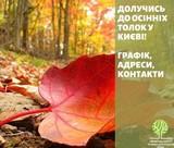 Осінні толоки у парках Дніпровського району