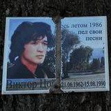 Верба Віктора Цоя у Києві отримає охоронний статус